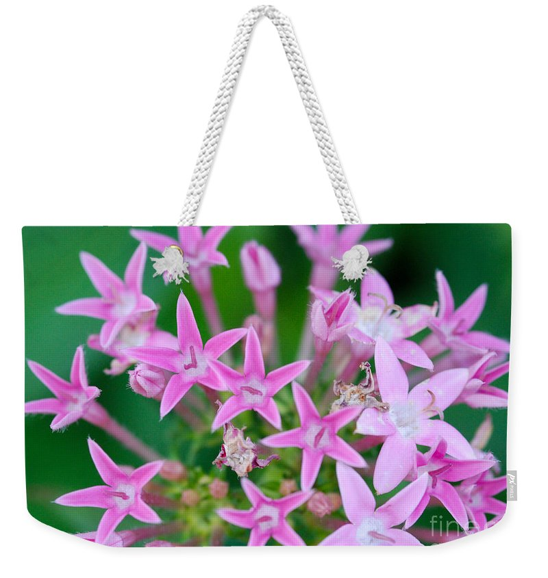 Star Shaped Flowers Weekender Tote Bag featuring the photograph Pentas 'cranberry Punch' Flowers by Optical Playground By MP Ray