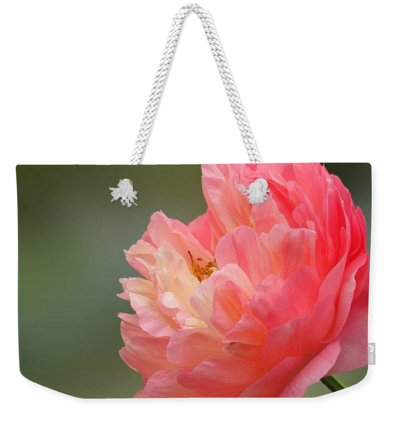 Beautiful Flower Weekender Tote Bag featuring the photograph Peony Portrait by Lena Photo Art