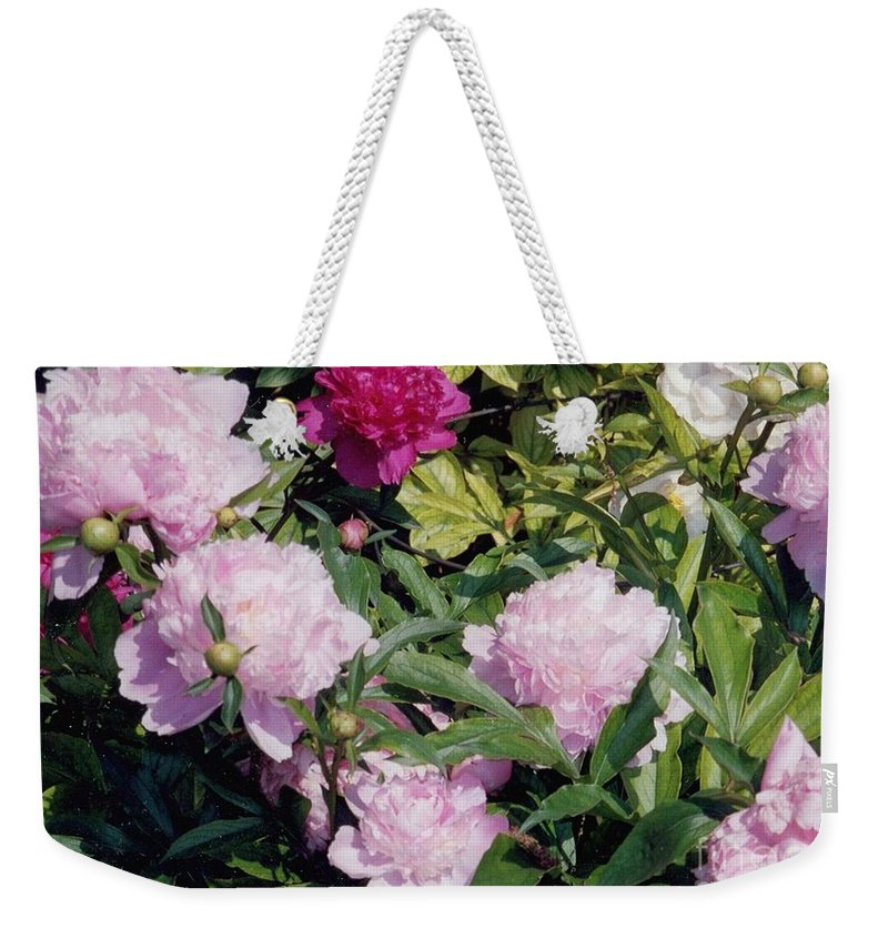 Peony Weekender Tote Bag featuring the photograph Peonies In Pinks by Laurie Eve Loftin