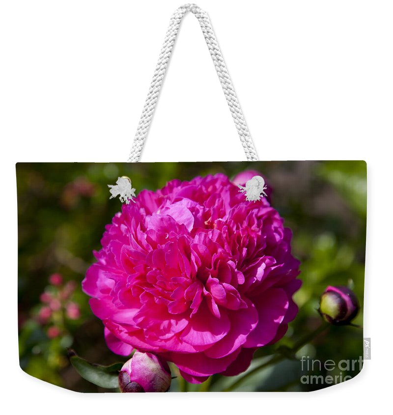 Red Weekender Tote Bag featuring the photograph Peony by Brian Jannsen