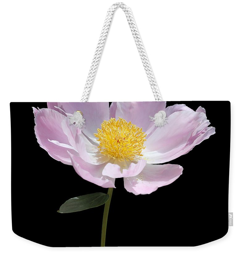 Peony Weekender Tote Bag featuring the photograph Peony Flower Portrait by Jennie Marie Schell