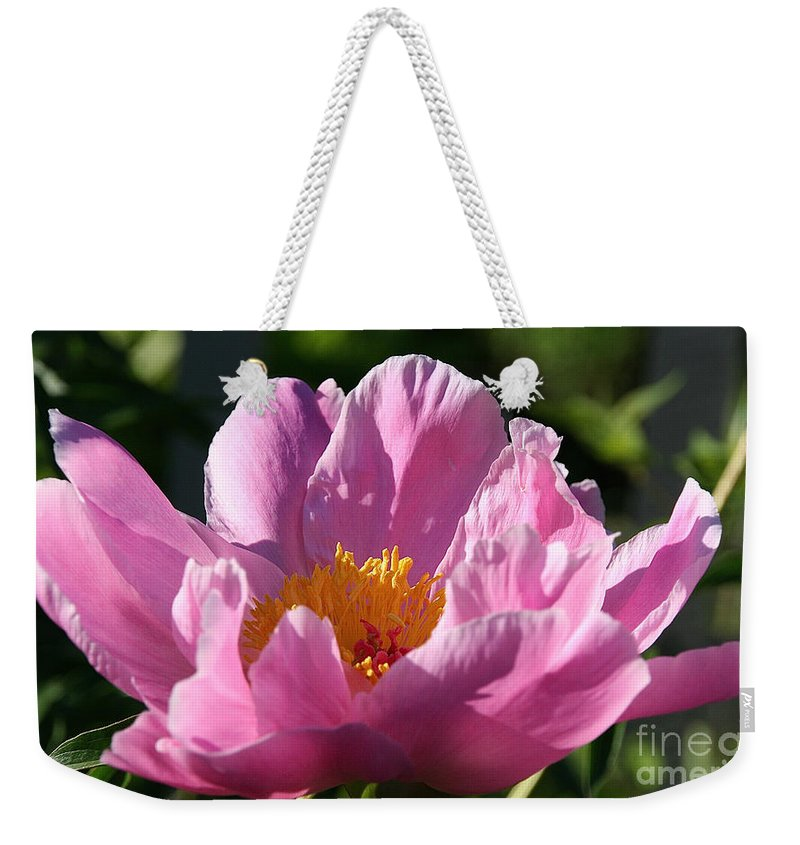 Flower Weekender Tote Bag featuring the photograph Peony Pink by Susan Herber