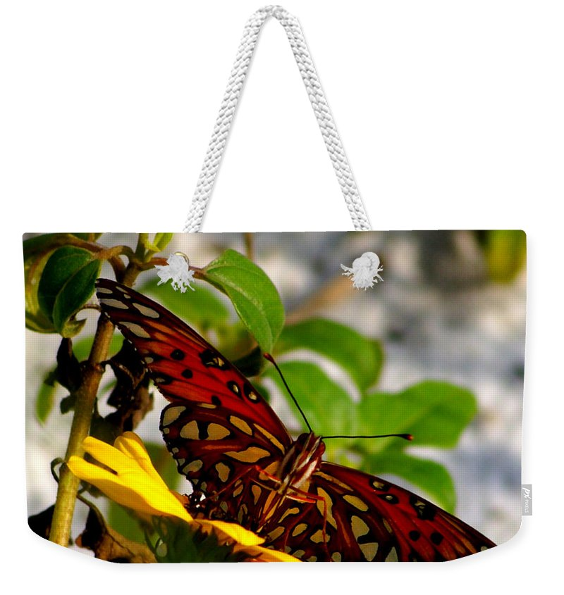 Digital Photograph Weekender Tote Bag featuring the photograph Perched On A Daisy by Laurie Pike
