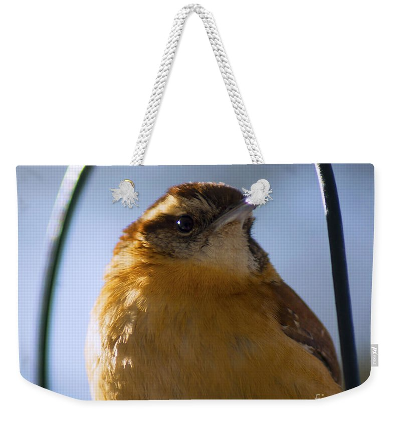 Bird Weekender Tote Bag featuring the photograph Perched Portrait by Joe Geraci