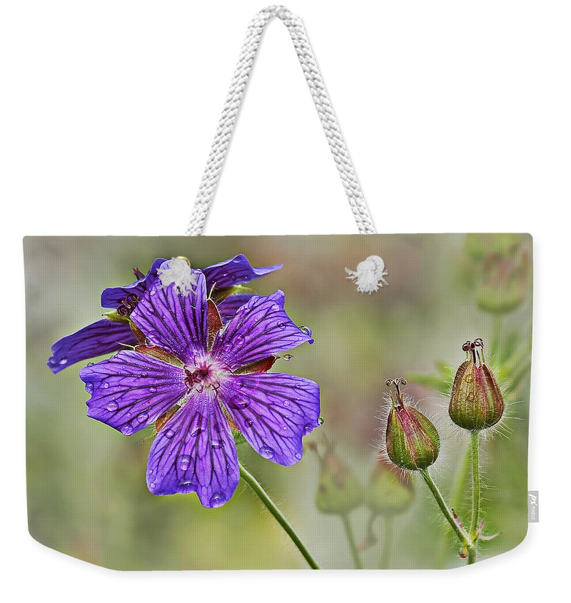Floral Weekender Tote Bag featuring the photograph Perennial Geranium by Marcia Colelli