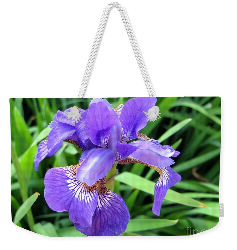 Flower Weekender Tote Bag featuring the photograph The Beauty Of It All by Jaunine Roberts