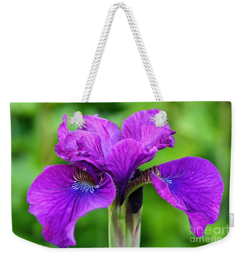 Flower Weekender Tote Bag featuring the photograph Perfect Purple Specimen by Susan Herber