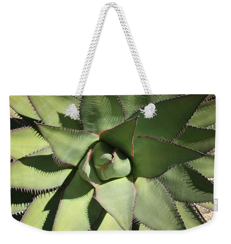 Perfect Symmetry Weekender Tote Bag featuring the photograph Perfect Symmetry by Ellen Henneke