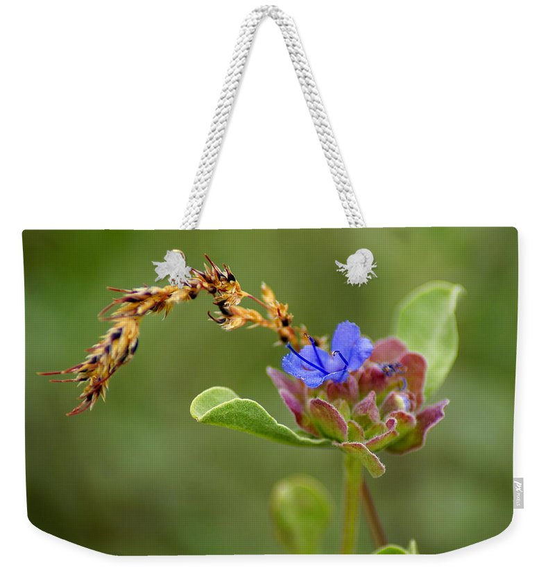 Flowers Weekender Tote Bag featuring the photograph Perfectly Wonderous Flowerland by Ben Upham III