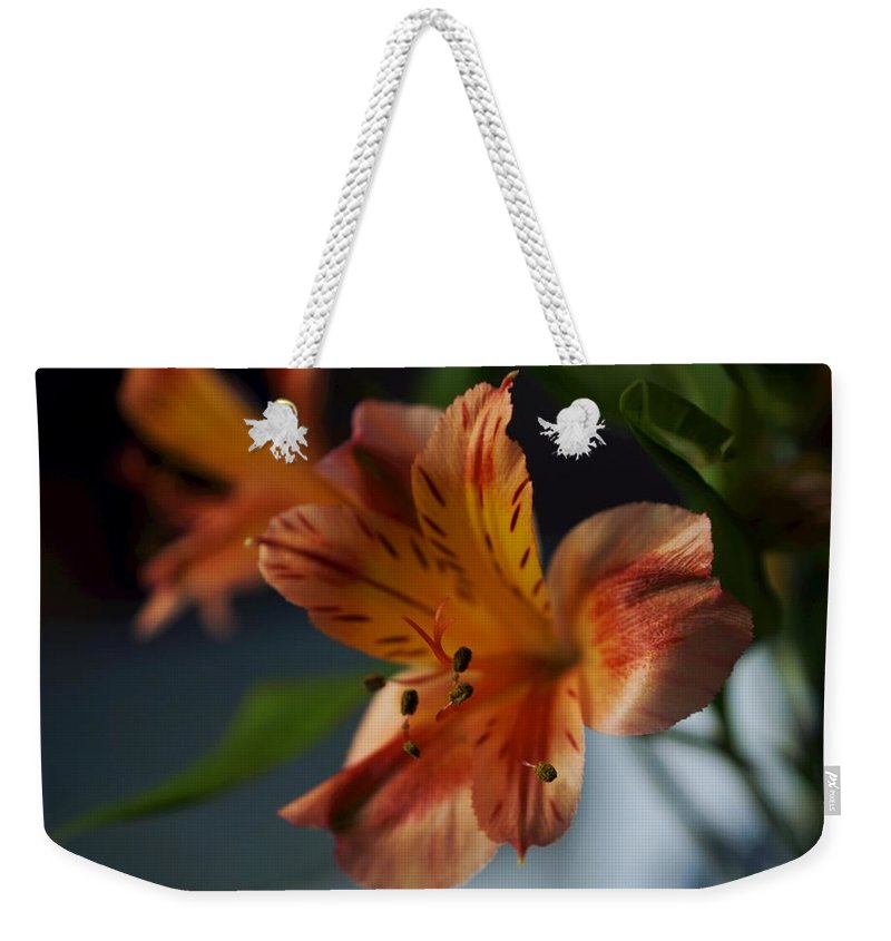 Matt Matekovic Weekender Tote Bag featuring the photograph Peruvian Lily by Photographic Arts And Design Studio