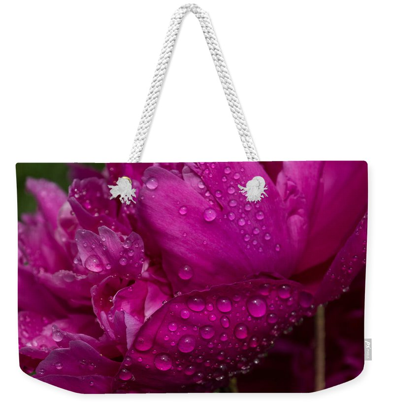 Peony Weekender Tote Bag featuring the photograph Petals And Drops I by Georgia Mizuleva