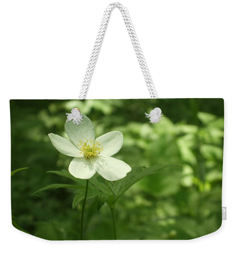 Weekender Tote Bag featuring the photograph Petals Of White by Katerina Naumenko