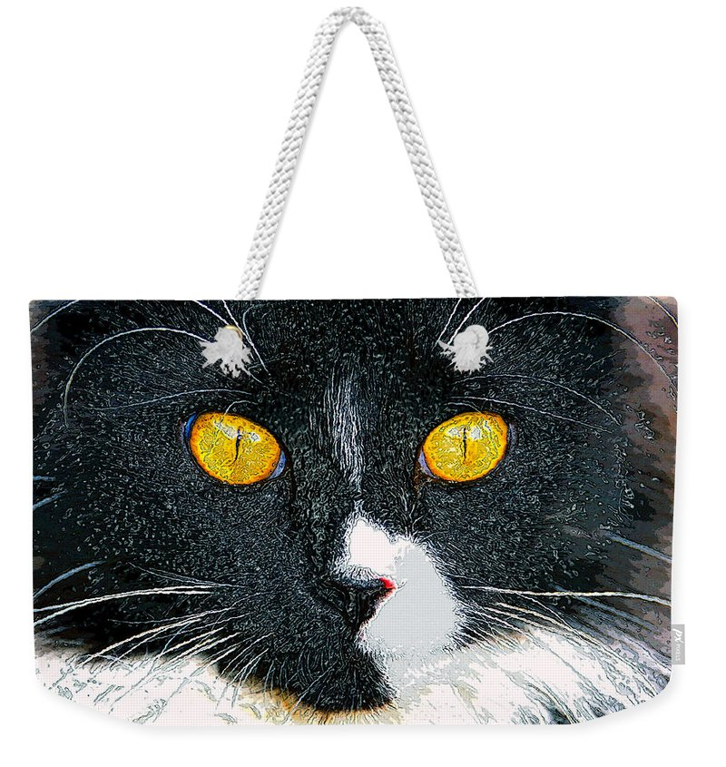Cat Weekender Tote Bag featuring the painting Phantom by David Lee Thompson