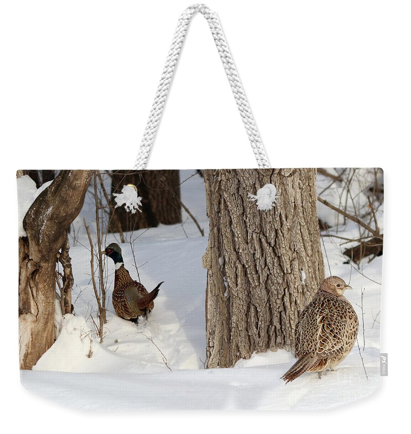 Rooster Weekender Tote Bag featuring the photograph Pheasant Pair by Lori Tordsen