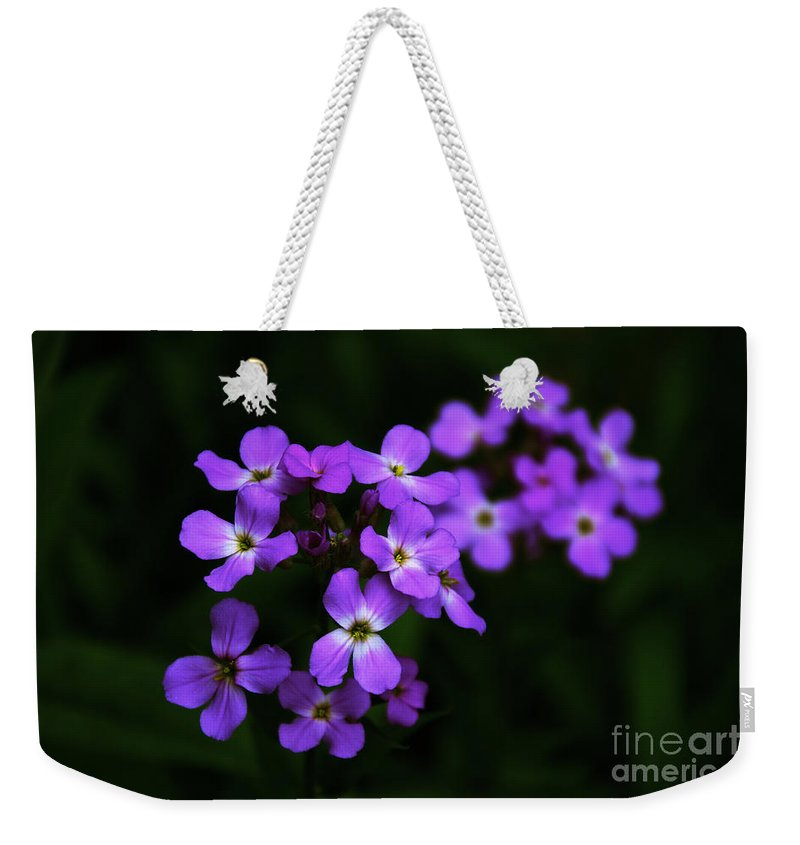 Phlox Weekender Tote Bag featuring the photograph Phlox Blossoms by William Norton