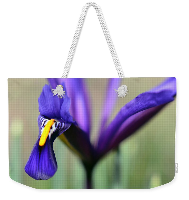 Photography Weekender Tote Bag featuring the photograph Phoenix by Sebastiano Secondi
