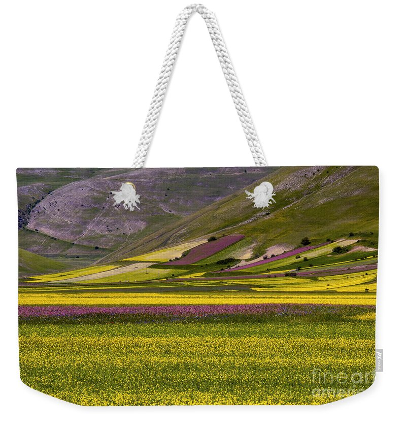 Piano Grande Umbria Italy Flower Flowers Wildflower Wildflowers Mountain Mountains Landscape Landscapes Tree Trees Weekender Tote Bag featuring the photograph Piano Grande by Bob Phillips