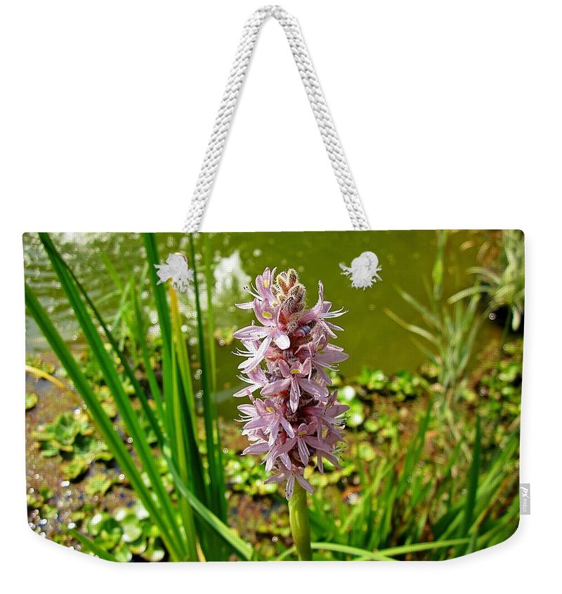 Pickerel Weed Weekender Tote Bag featuring the photograph Pickerel Weed Plant by MTBobbins Photography