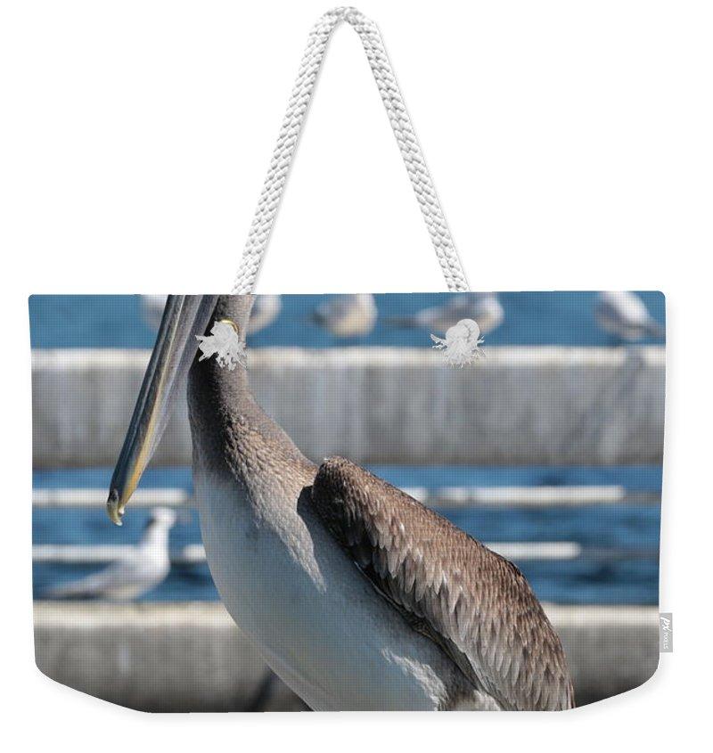 Pelecanus Occidentalis Weekender Tote Bag featuring the photograph Pier Brown Pelican by Carol Groenen