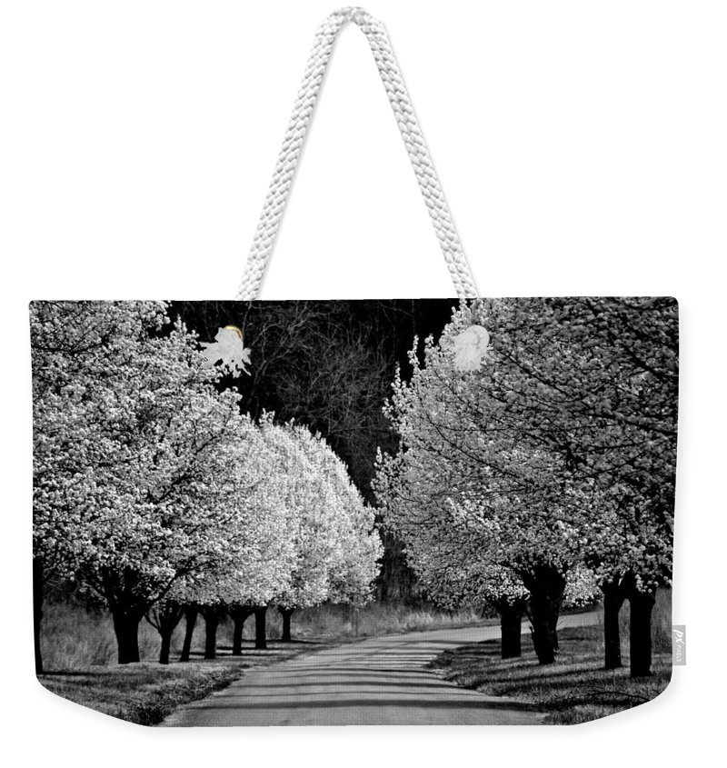 Dogwoods Weekender Tote Bag featuring the photograph Pigeon Mountain Dogwoods In Black And White by Tara Potts