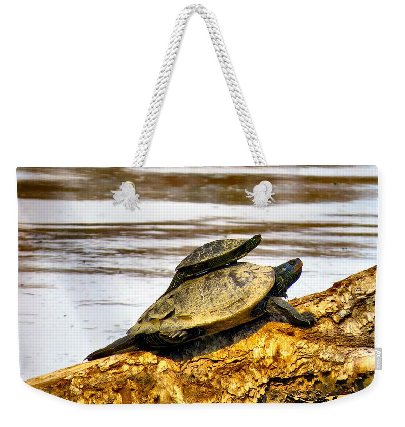 Elder Weekender Tote Bag featuring the photograph Piggy Backing by Art Dingo
