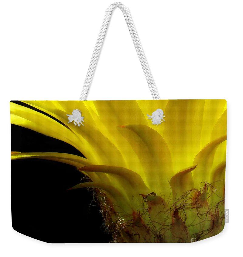 Cactus Weekender Tote Bag featuring the photograph Cactus Flower by Mike Nellums