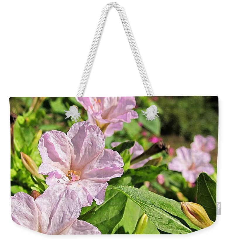 Four O'clocks Weekender Tote Bag featuring the photograph Pink 4 O'clocks by MTBobbins Photography