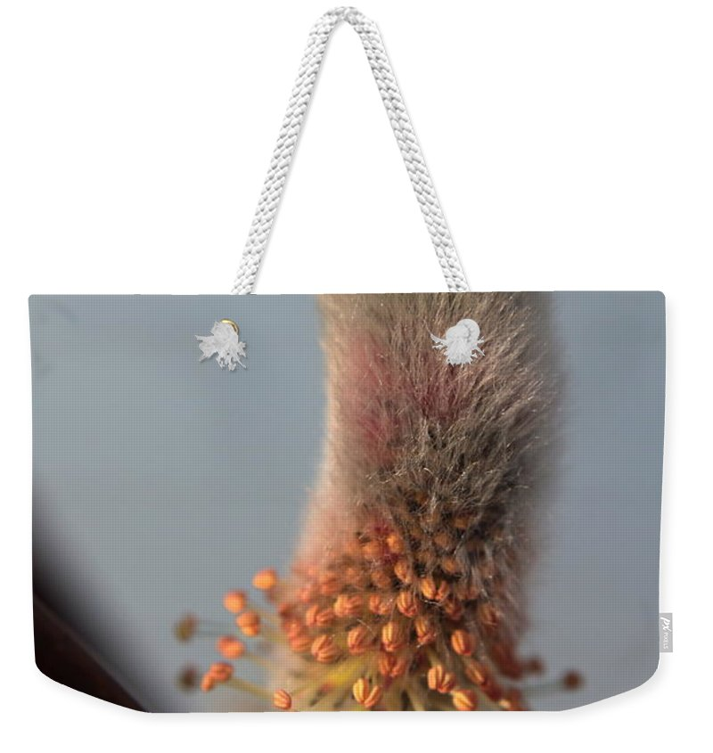 Emergence Weekender Tote Bag featuring the photograph Pink And Grey Pussy Willow In Bloom by Kenny Glotfelty