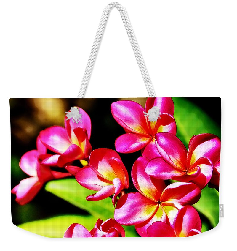 Pink Weekender Tote Bag featuring the photograph Pink And Red Plumeria by Douglas Barnard
