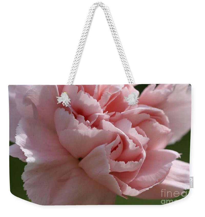 Pink Weekender Tote Bag featuring the photograph Pink Carnation by Carol Lynch