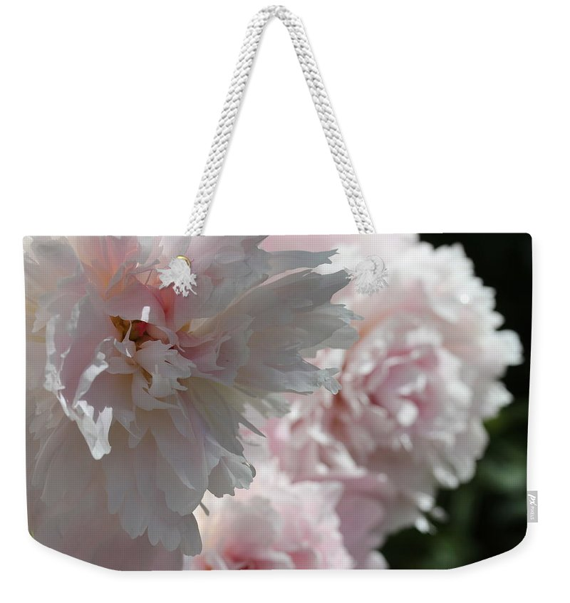 Peony Weekender Tote Bag featuring the photograph Pink Confection by Ruth Kamenev