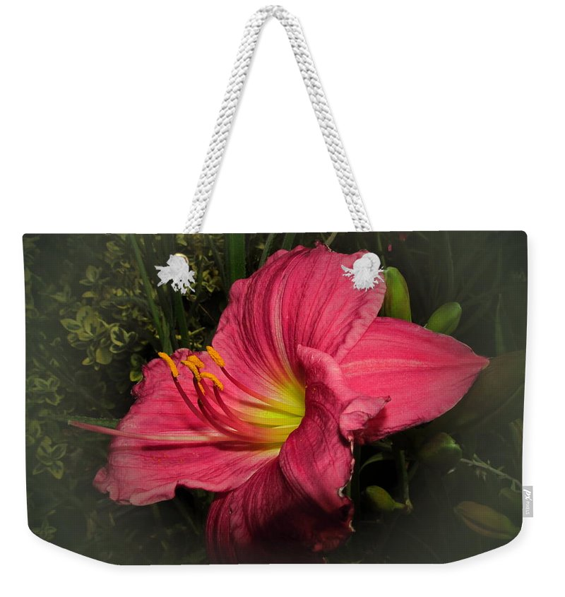 Floral Weekender Tote Bag featuring the photograph Pink Day Lily by Joyce Dickens