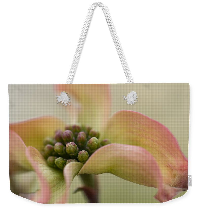 Blooming Weekender Tote Bag featuring the photograph Pink Dogwood Macro by Karen Forsyth