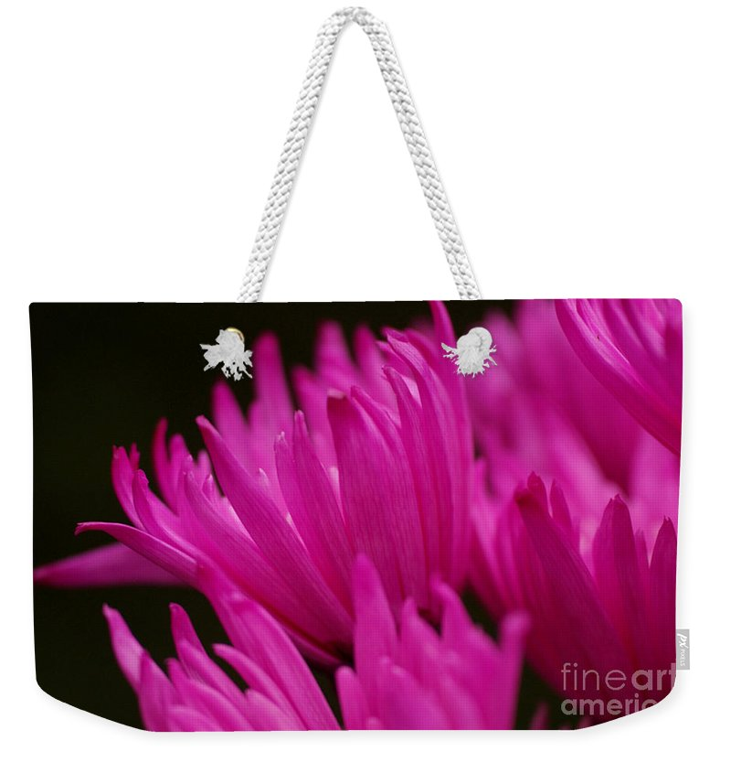 Pink Weekender Tote Bag featuring the photograph Pink Fire 2 by Carol Lynch