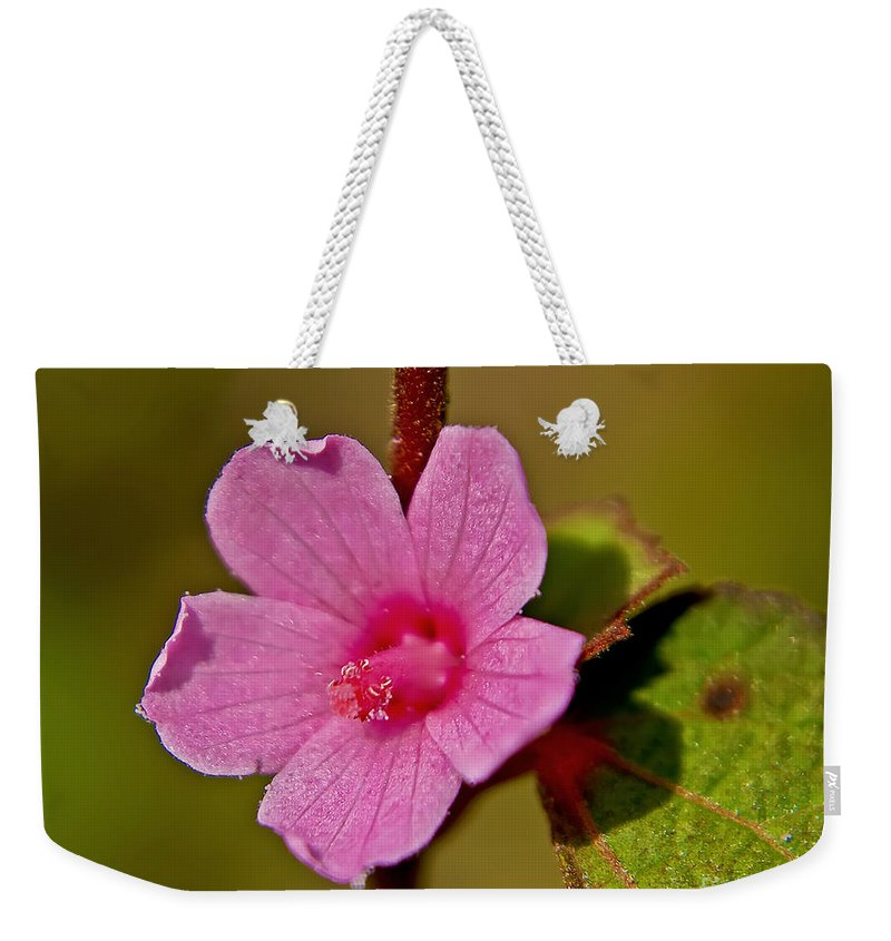 Flower Weekender Tote Bag featuring the photograph Pink Flower by Olga Hamilton