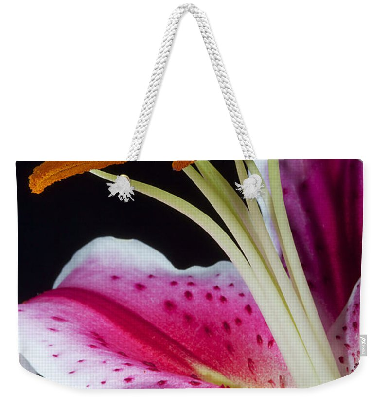 Lily Weekender Tote Bag featuring the photograph Pink Freckles by Phyllis Denton