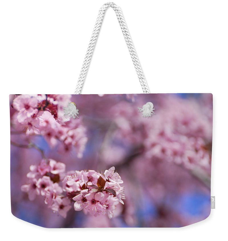 Cherry Weekender Tote Bag featuring the photograph Pink by Guido Montanes Castillo