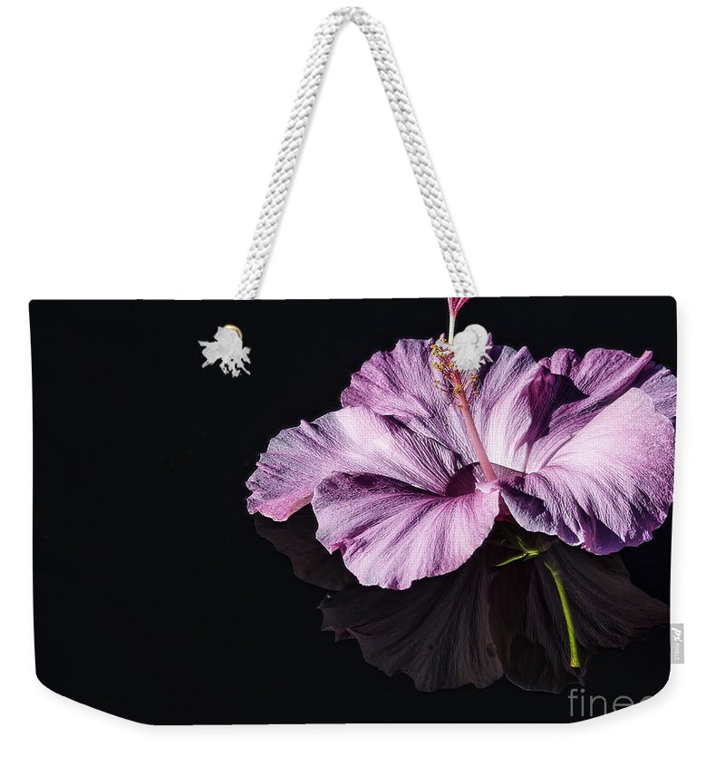 Hibiscus Weekender Tote Bag featuring the photograph Pink Hibiscus On Black Water by Joshua Roberts