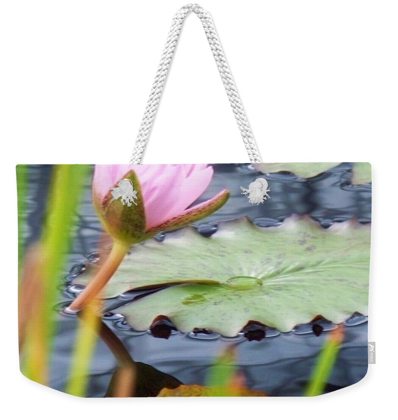 Photograph Weekender Tote Bag featuring the photograph Pink Lily And Pads by Eric Schiabor