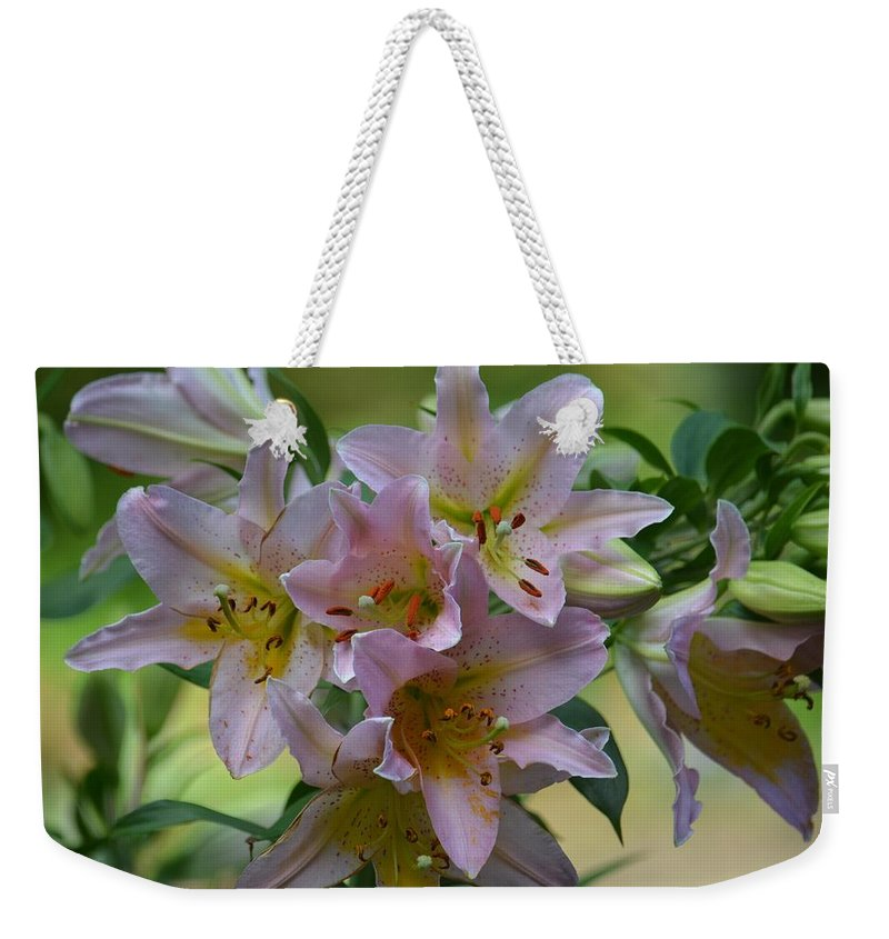 Pink Lily Fantasia Weekender Tote Bag featuring the photograph Pink Lily Fantasia by Maria Urso