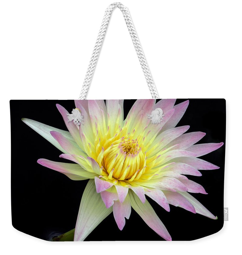 Landscape Weekender Tote Bag featuring the photograph Pink N Yellow Water Lily Too by Sabrina L Ryan