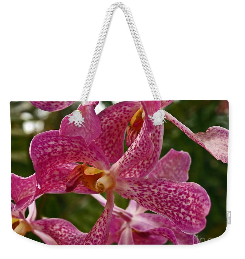 Mokara Orchid Weekender Tote Bag featuring the photograph Pink Orchid by Howard Stapleton