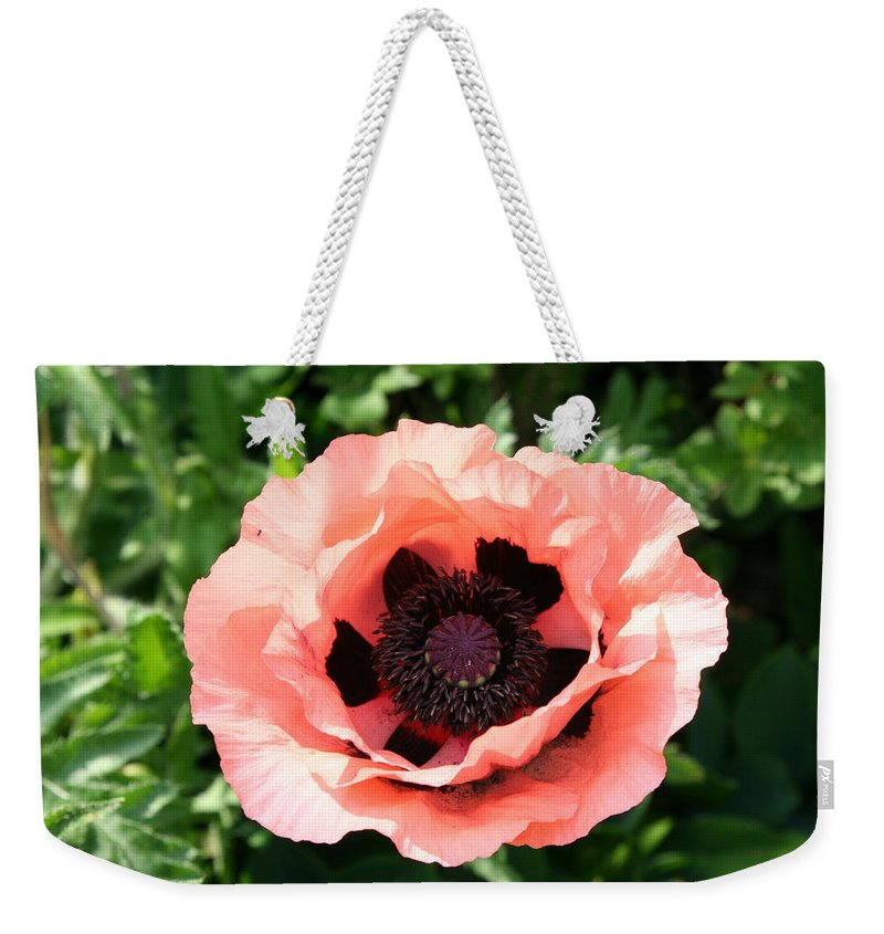 Poppy Weekender Tote Bag featuring the photograph Pink Poppy Bloom by Christiane Schulze Art And Photography