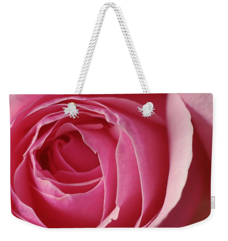 Blossom Weekender Tote Bag featuring the photograph Pink Rose Dof by Arthur Fix