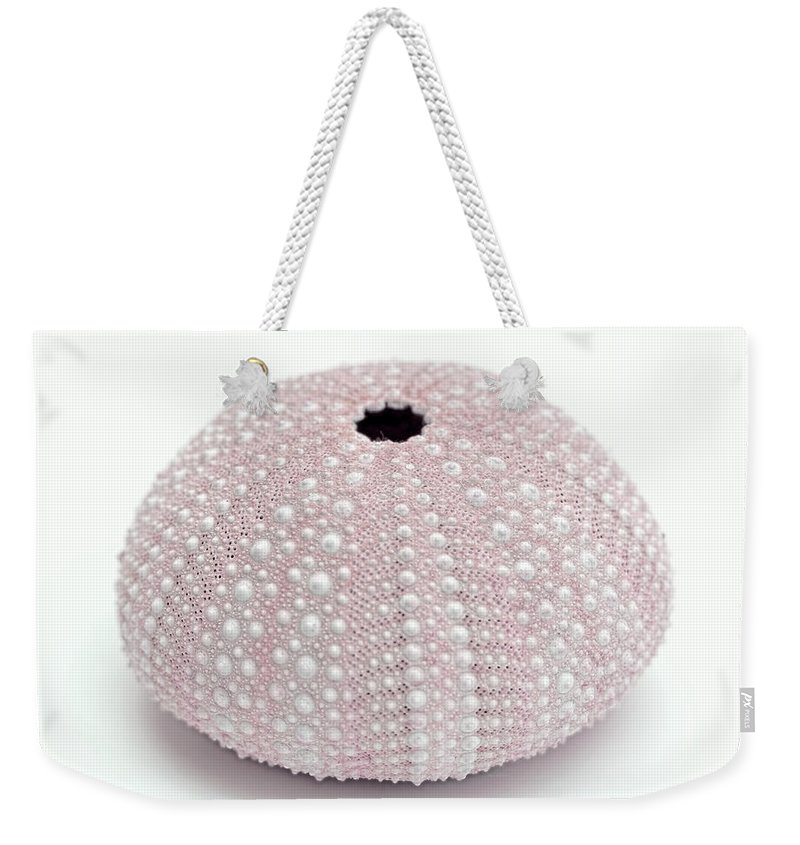 Sea Urchin Weekender Tote Bag featuring the photograph Pink Sea Urchin White by Jennie Marie Schell