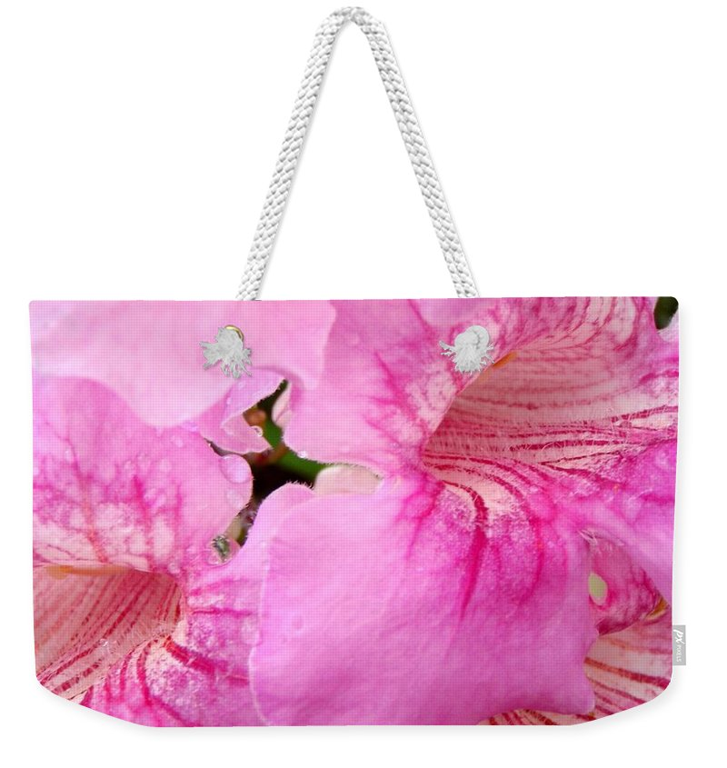 Flower Weekender Tote Bag featuring the photograph Pink Thunbergia by Mary Deal