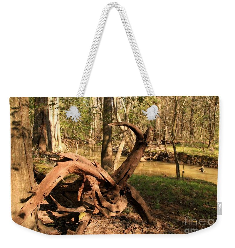 Congaree National Park Weekender Tote Bag featuring the photograph Pinwheel by Adam Jewell