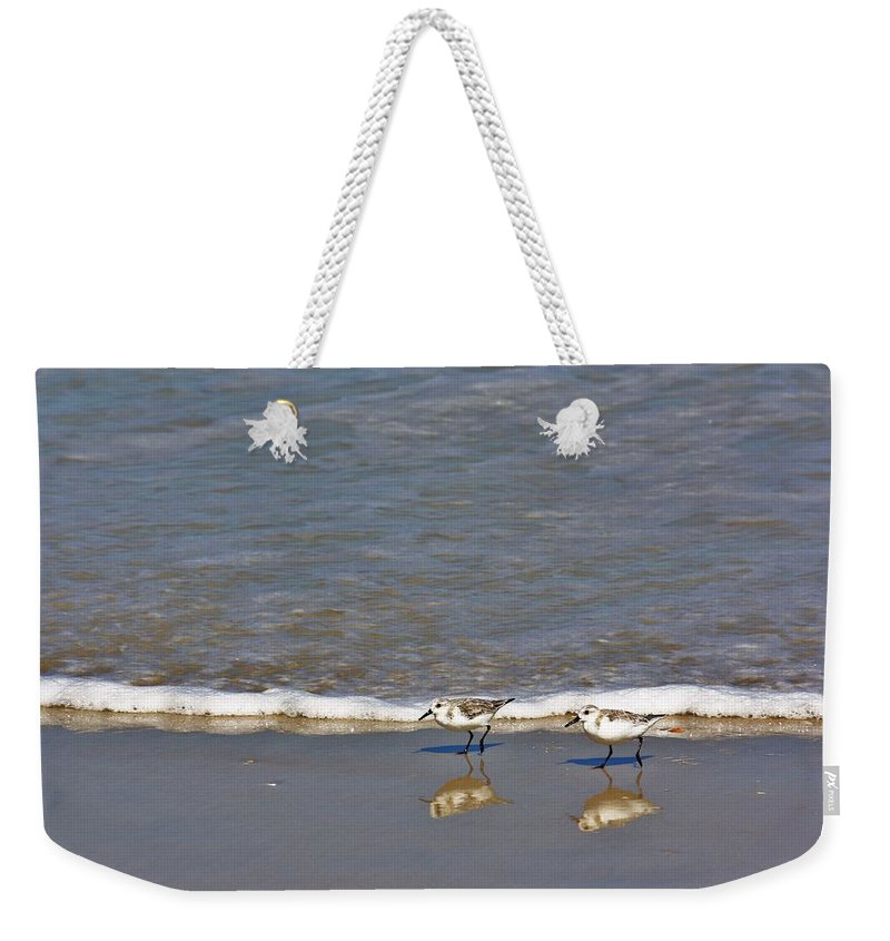 Sandpiper Weekender Tote Bag featuring the photograph Pipers by Chuck Hicks