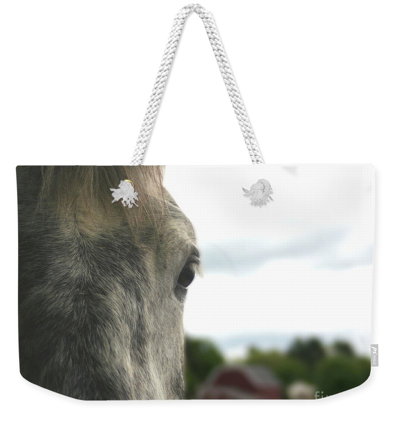 Horse Weekender Tote Bag featuring the photograph Piper's Thoughts by Smilin Eyes Treasures