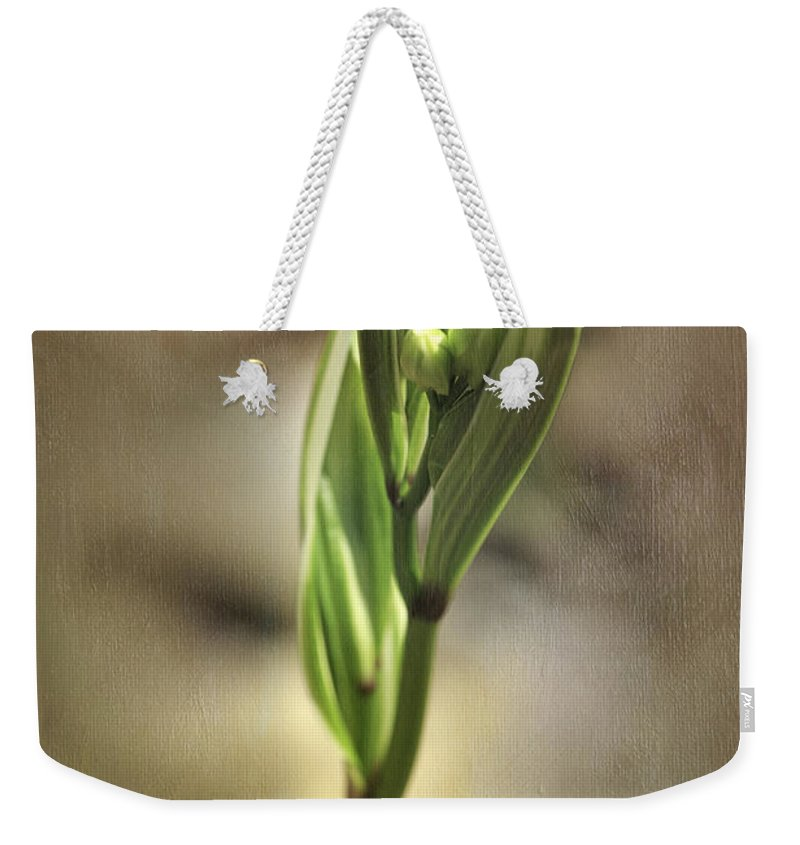 Plant Weekender Tote Bag featuring the photograph Pirouette by Fran Gallogly